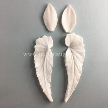 imprint flower angel wing begonia