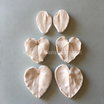 complete cyclamen veiners