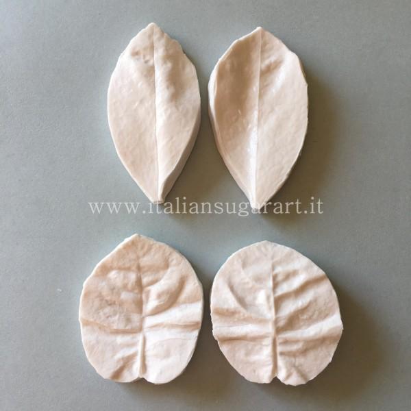 calco in silicone della bouganvillea