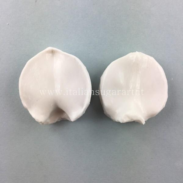 venatore in silicone di eritrina cristagalli