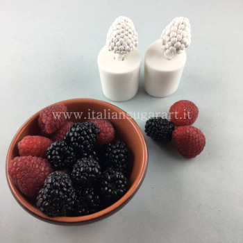 raspberry and blackberry fruit mold