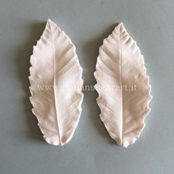 veiner chestnut leaf