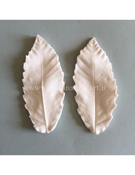 veiner chestnut leaf