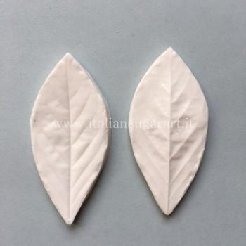 Realistic glycine leaf silicone marker