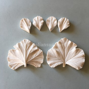 Set molds for Pelargonium