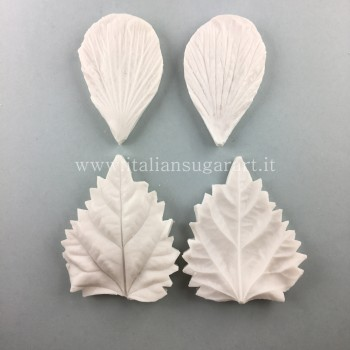 Set of veiners for Hibiscus flowers