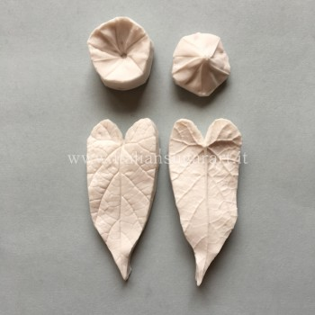 double-impression mold of the morning glory leaf