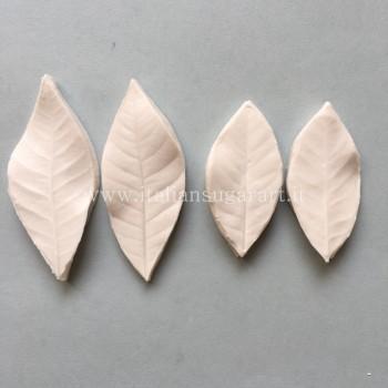 flower molds in cold porcelain Japanese magnolia