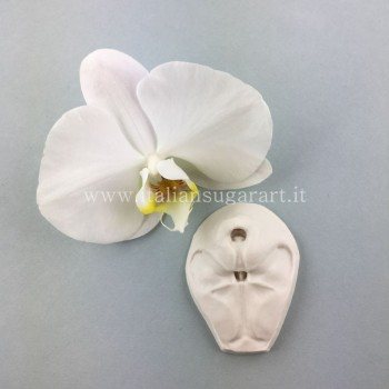 veiner silicone rubber central orchid