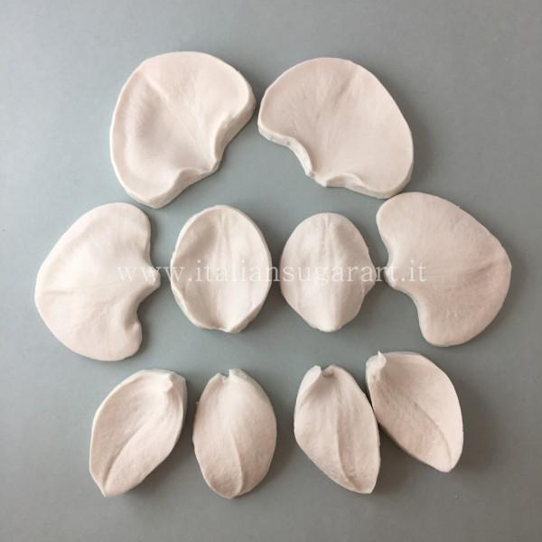 Venatore  silicone dell'orchidea gum paste o flowerpaste