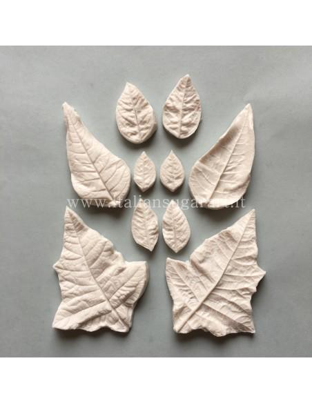 venatori silicone Stella di Natale Set petali diverse misure