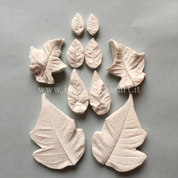 veiners  silicone Stella di Natale Poinsettia Flower