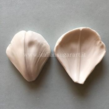Venatore  impronta  silicone  alimentare  fiore del Tulipano