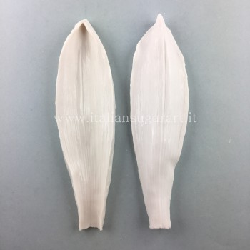 Veiner for realistic grain silicon tulip leaf