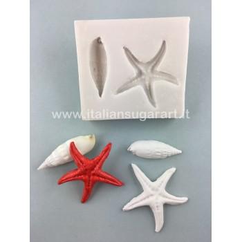 stampo ad espulsione silicone conchiglia e stella marina