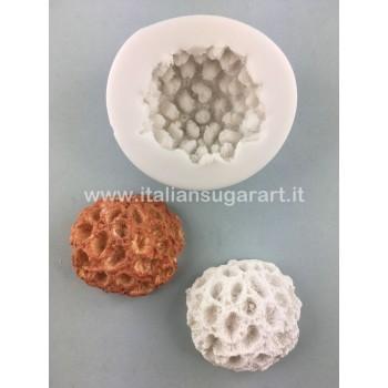 stampo corallo spugna