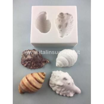 Shells Set 1 Mould