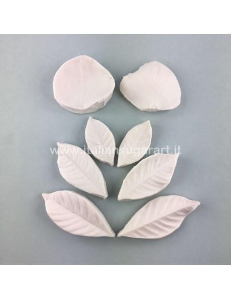 impronta per zucchero set gardenia