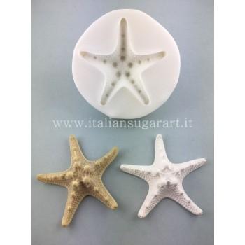 stampo stella marina