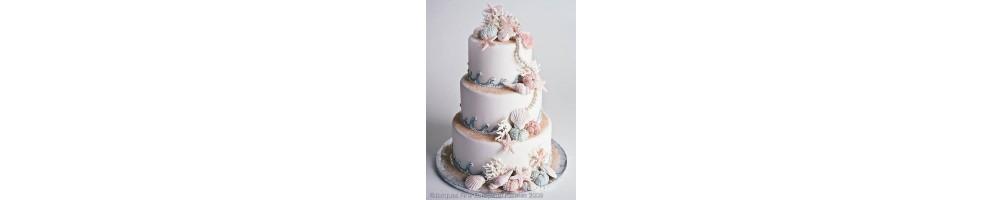 Buy online molds for shells in sugar paste cake design